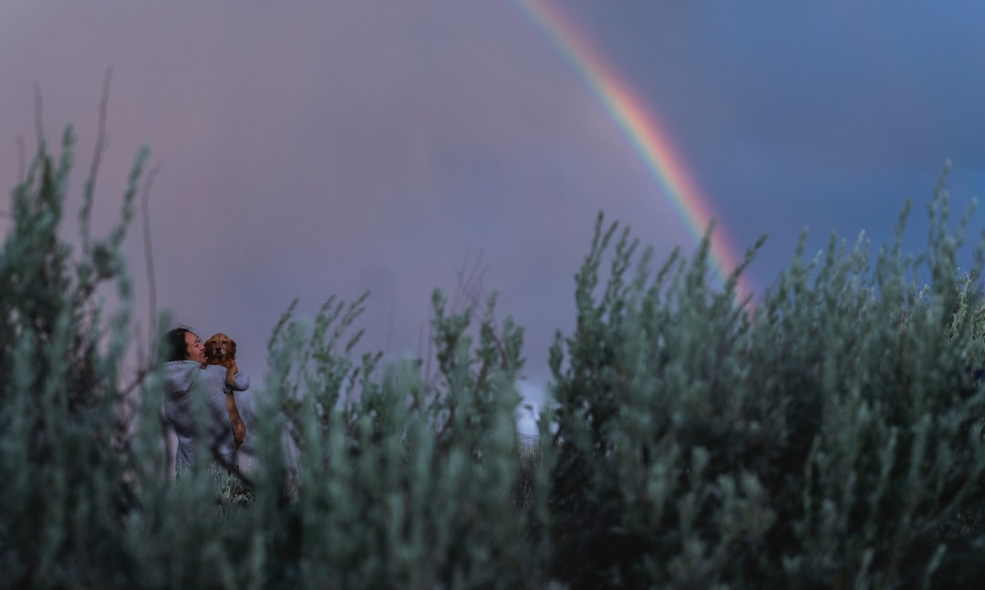 Rainbow after a rainstorm at Mt. Shasta. Bentley (my dog) looks real excited.
