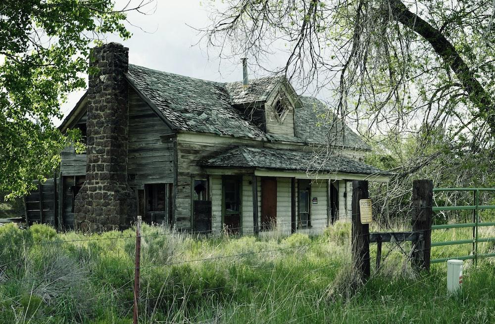 cabin near trees