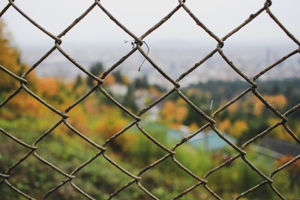 gray wire fence
