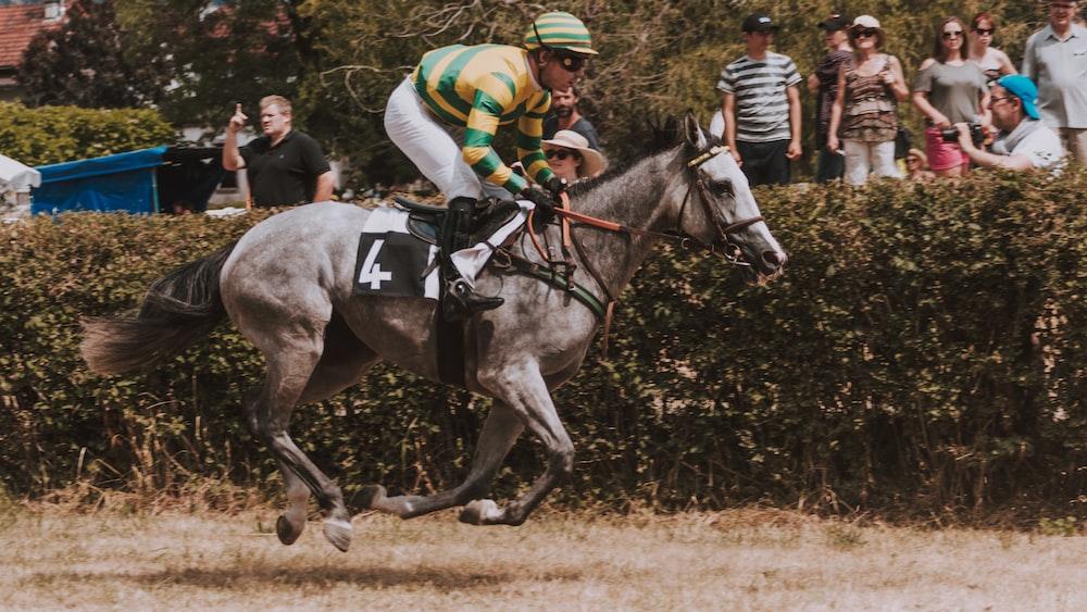 jockey on race