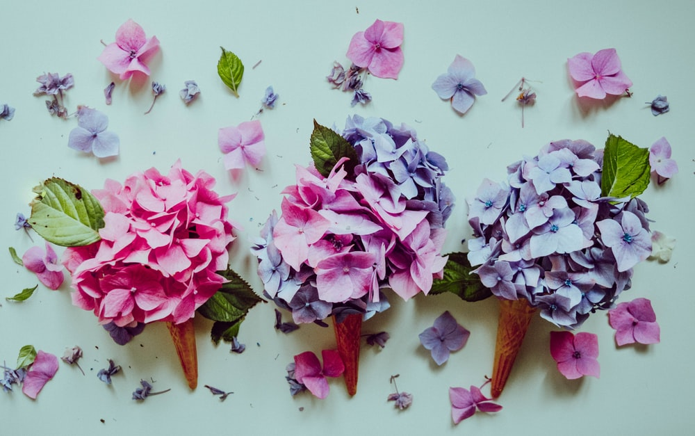 pink and purple artificial flowers wall decor