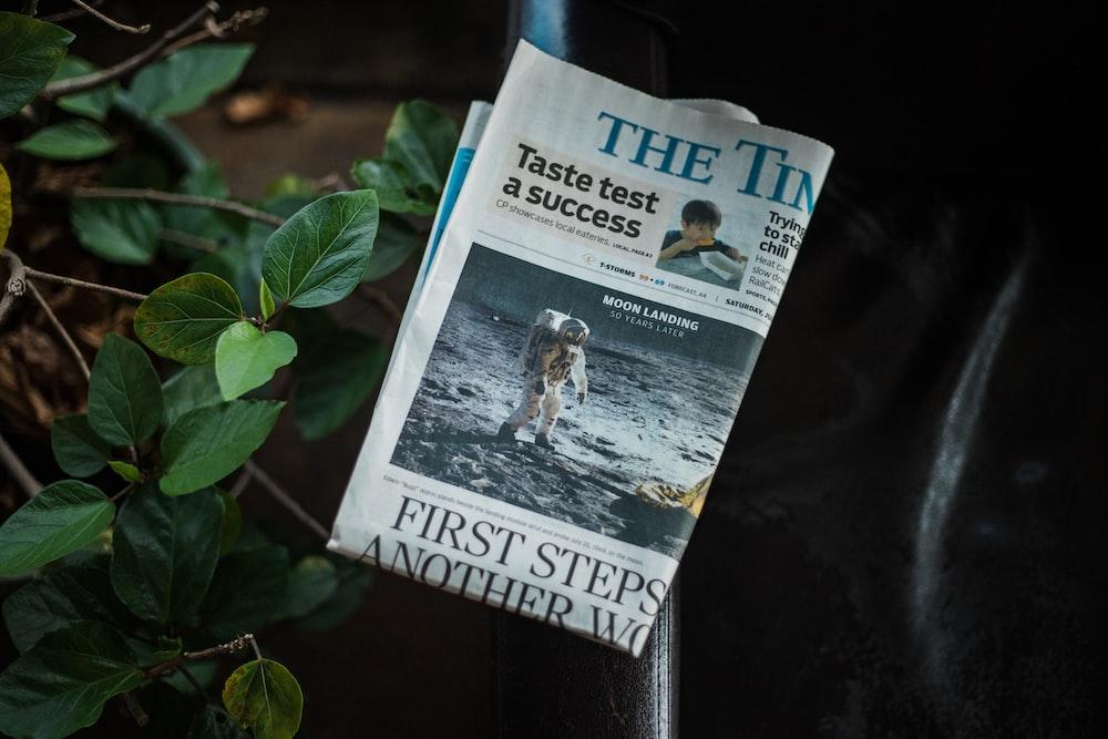 newspaper on green plant