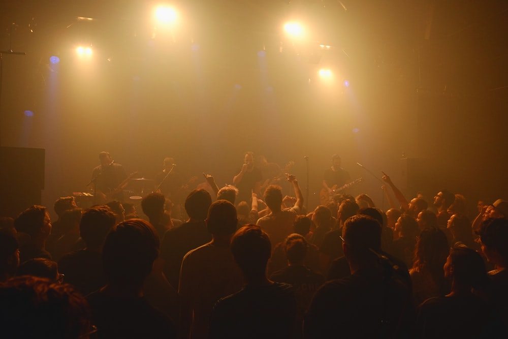 crowd of people during nighttime