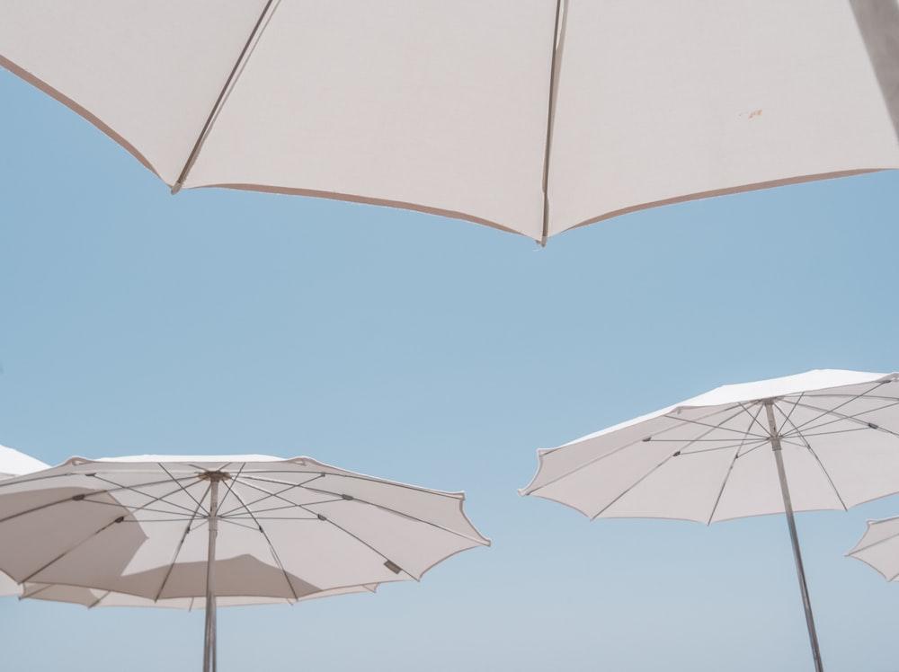 white umbrellas on sky