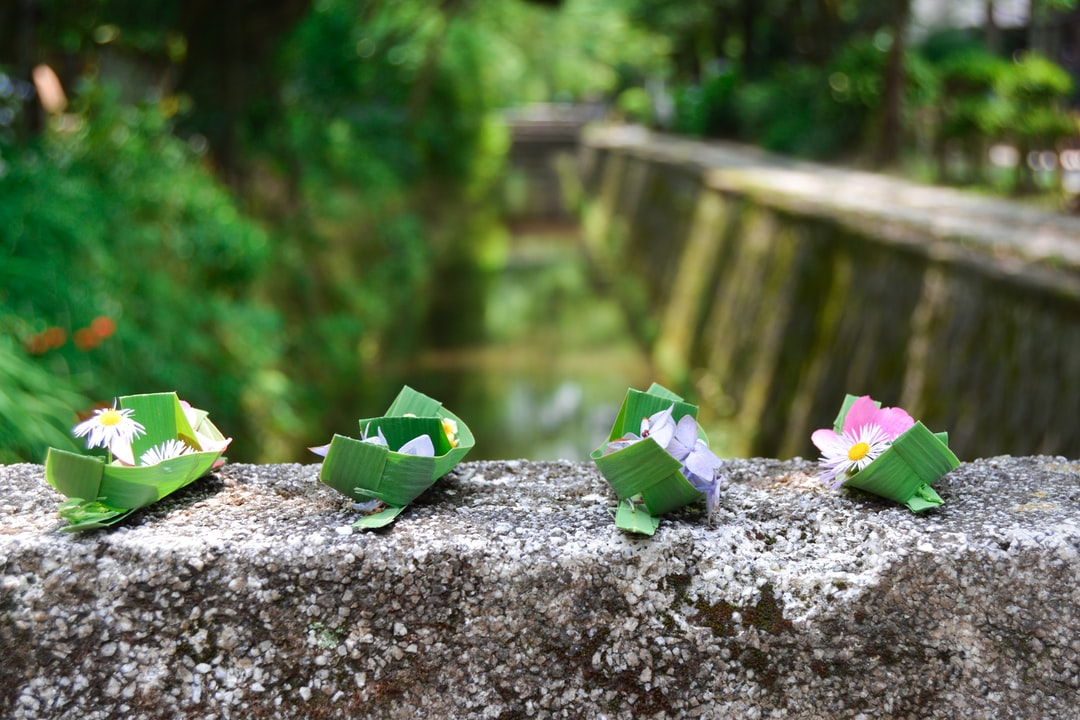 The Philosopher's path in Kyoto is especially beautiful during spring. During the summer, a local man may offer you to make a wish with one of his handmade leaf boat filled with colorful flowers.