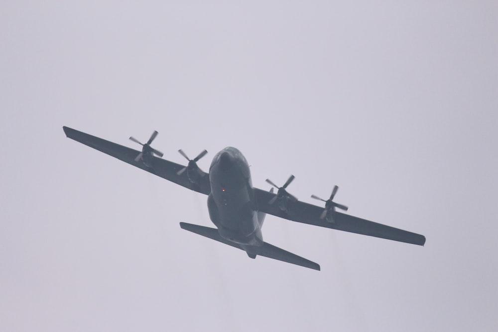 dlying black plane