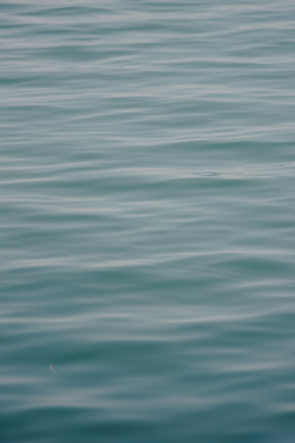 body of water close-up photography