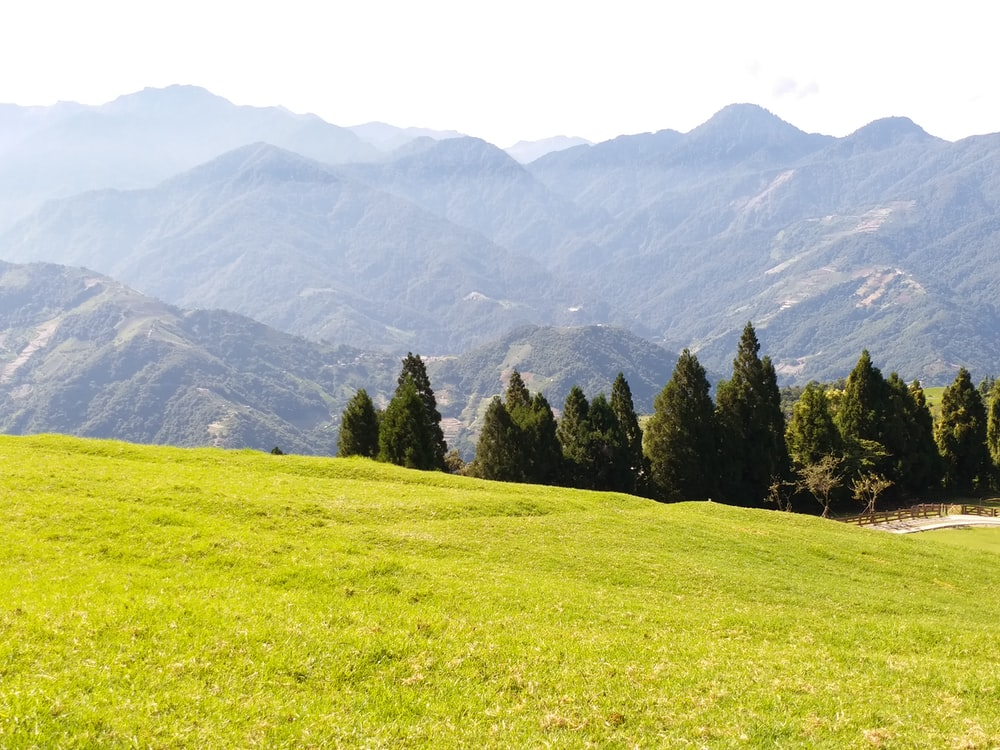 green field near trees and mountains during daytime