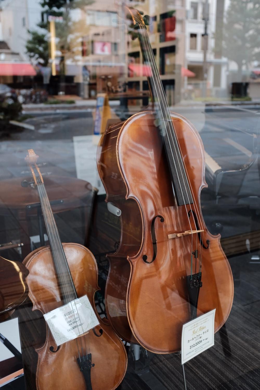 Musical instrument, cello, japan and matsuyama | HD photo by Mak