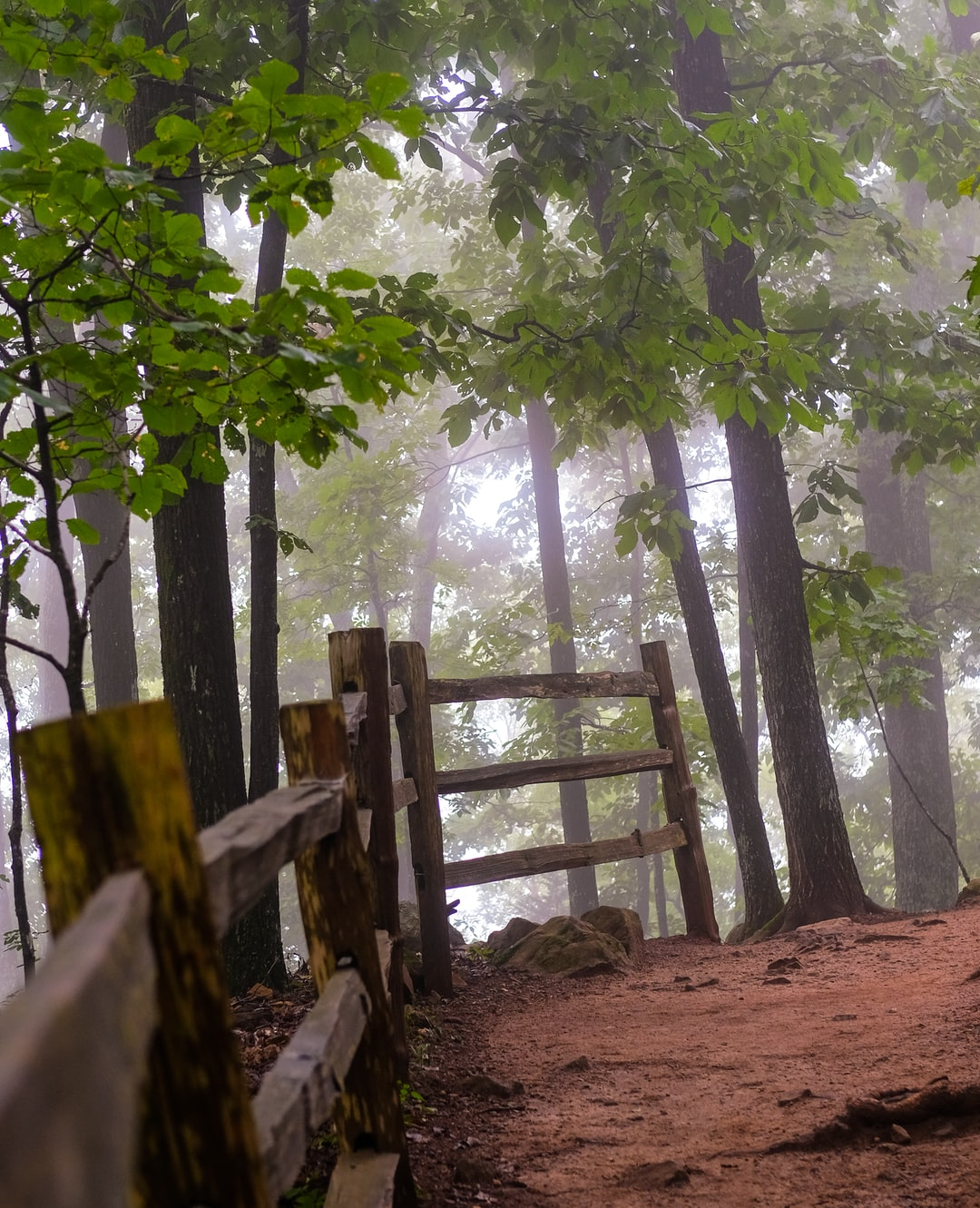 Mountain trail with fence foggy