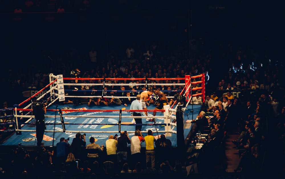 people watching boxing