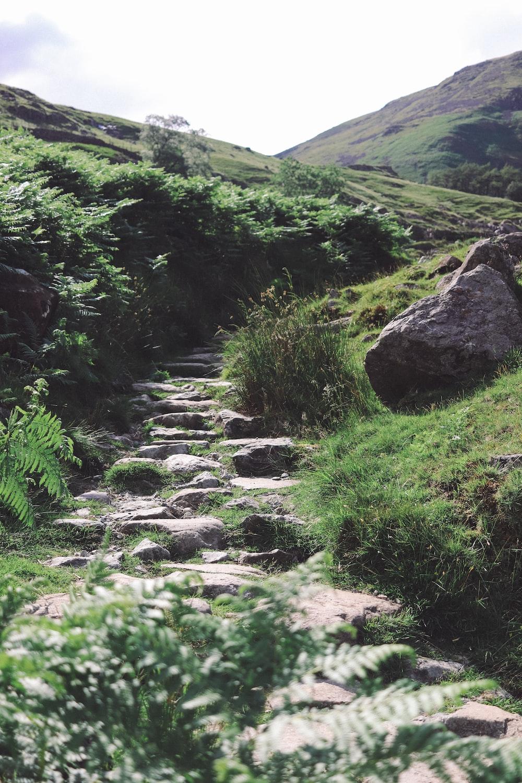 rocks stairs