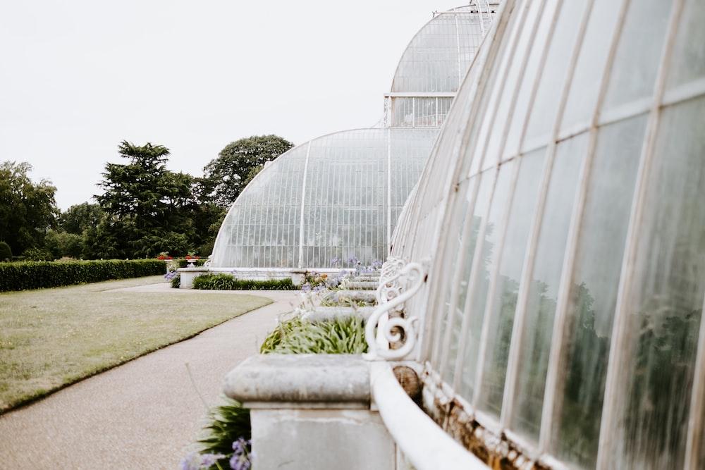 white greenhouse