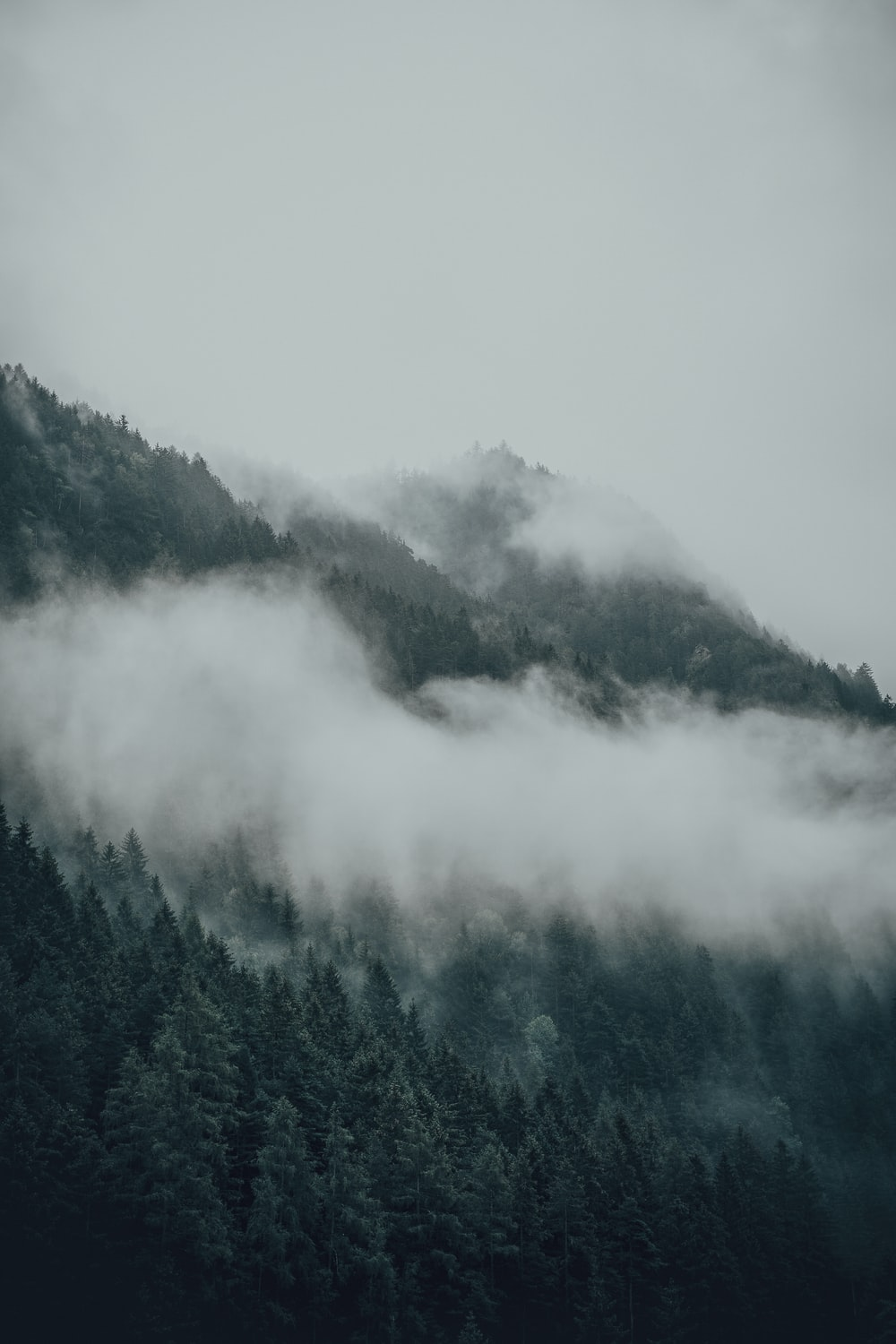 mountain with trees and cloudy sky
