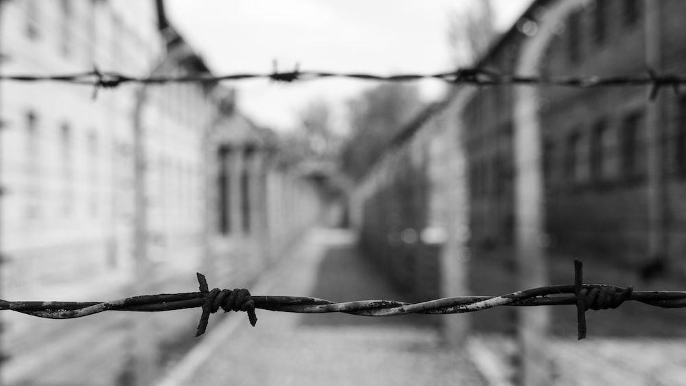 gray bob wire fence