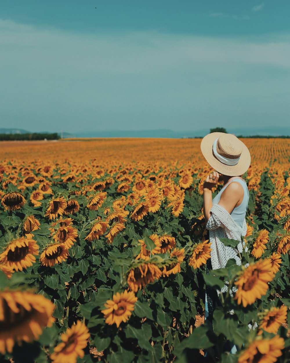 photography of woman standing near sunflower field during daytime