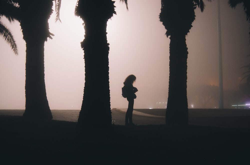 silhouette of woman near the tree