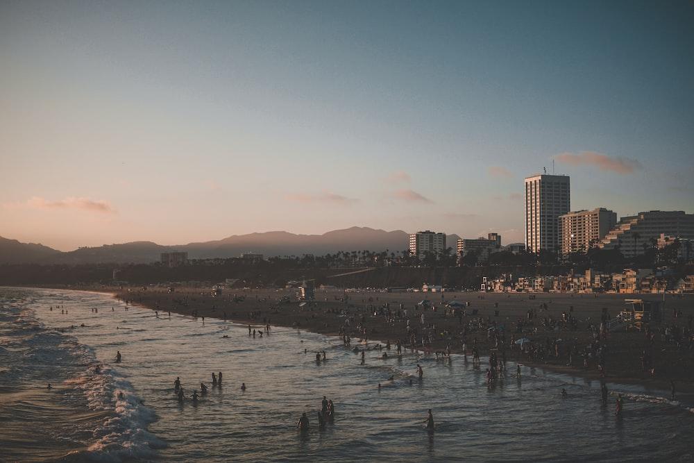 people on beach near city