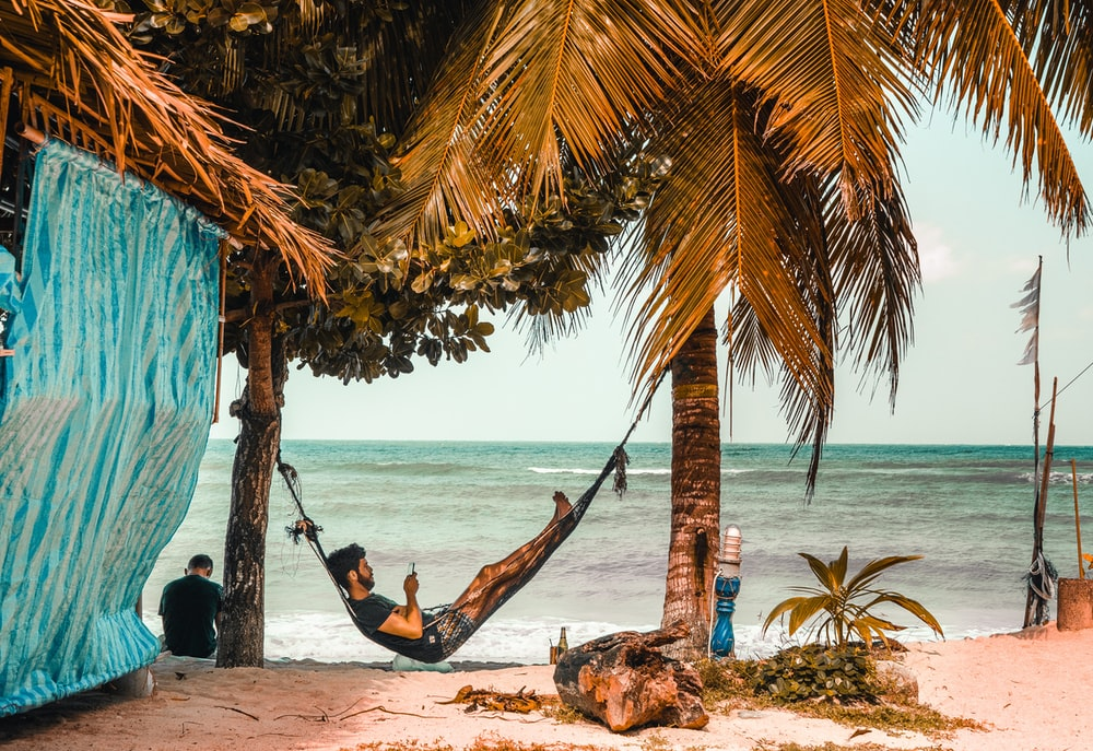 man on hammock while using smartphone beside seashore