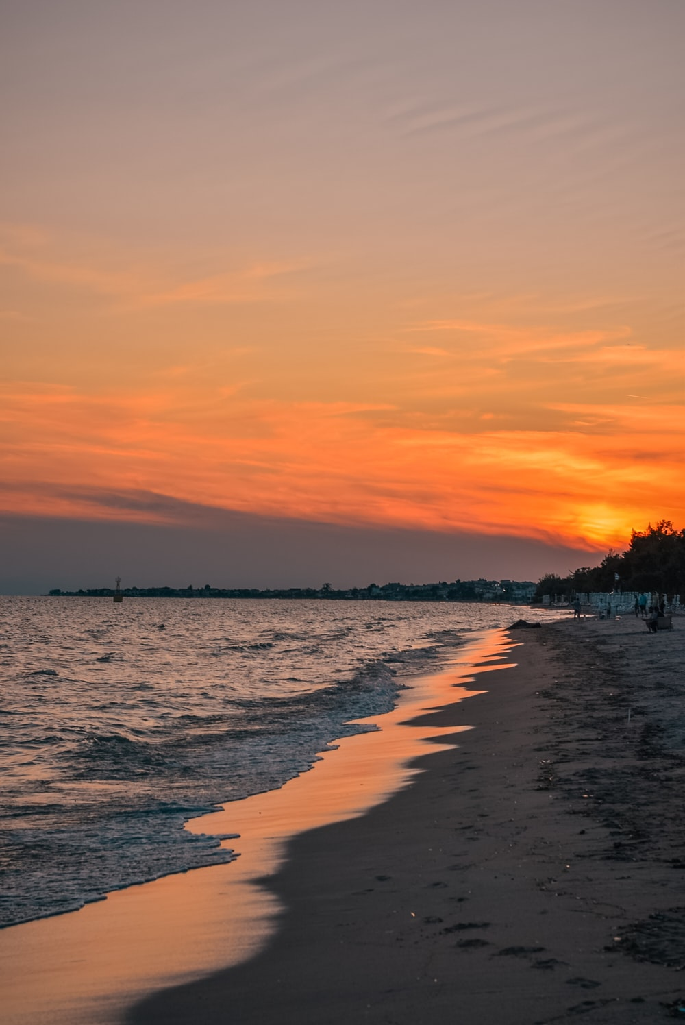 photography of seashore during sunset