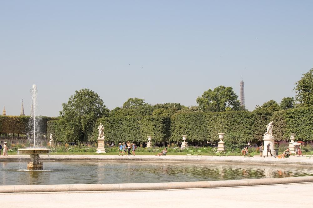 outdoor fountain across green plants
