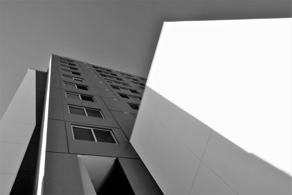 gray and white buildings