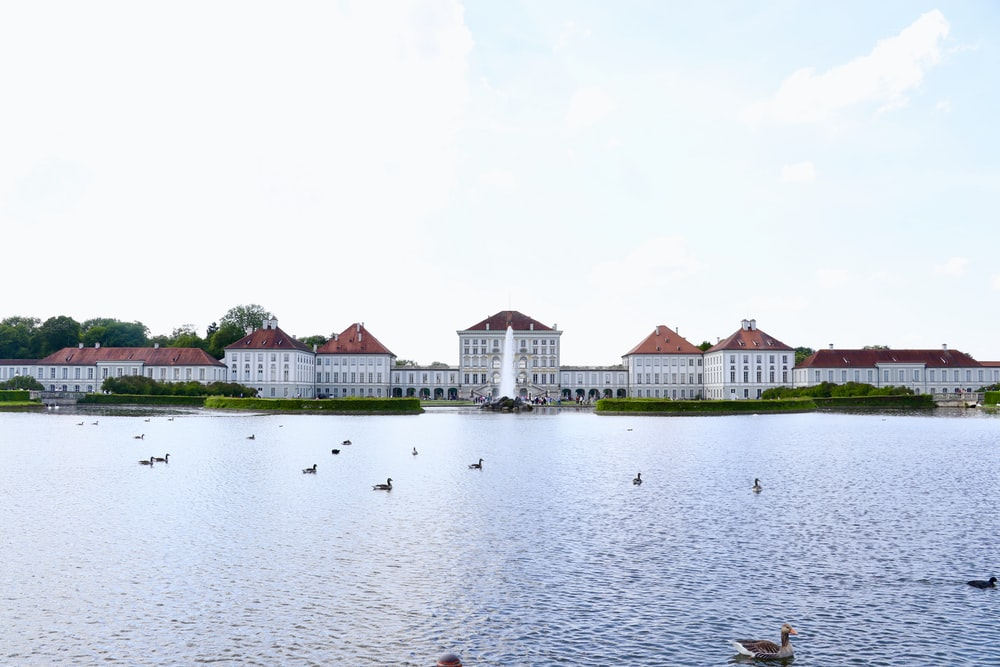 white houses near body of water