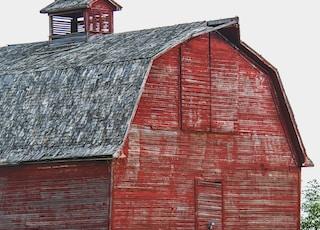 barn beside hay rolls