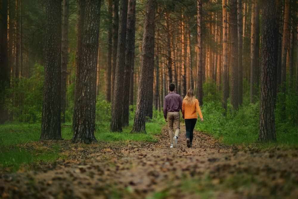 man and woman walking on walkway with dried leaves