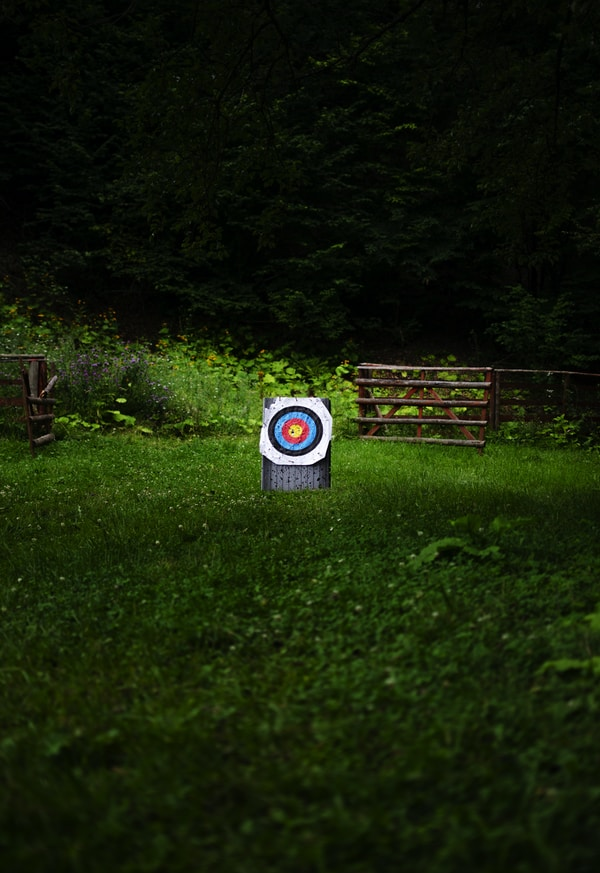 white and multicolored target board on green field
