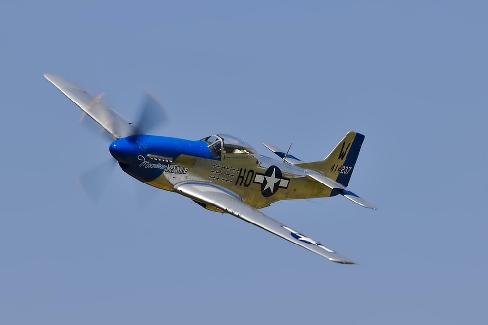 blue and white monoplane