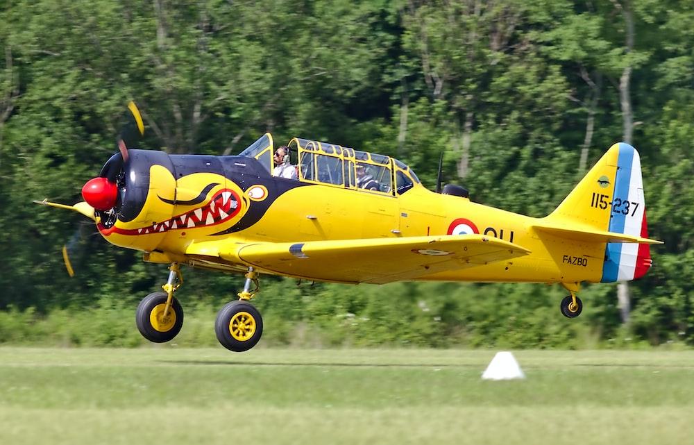 yellow and black plane near green field