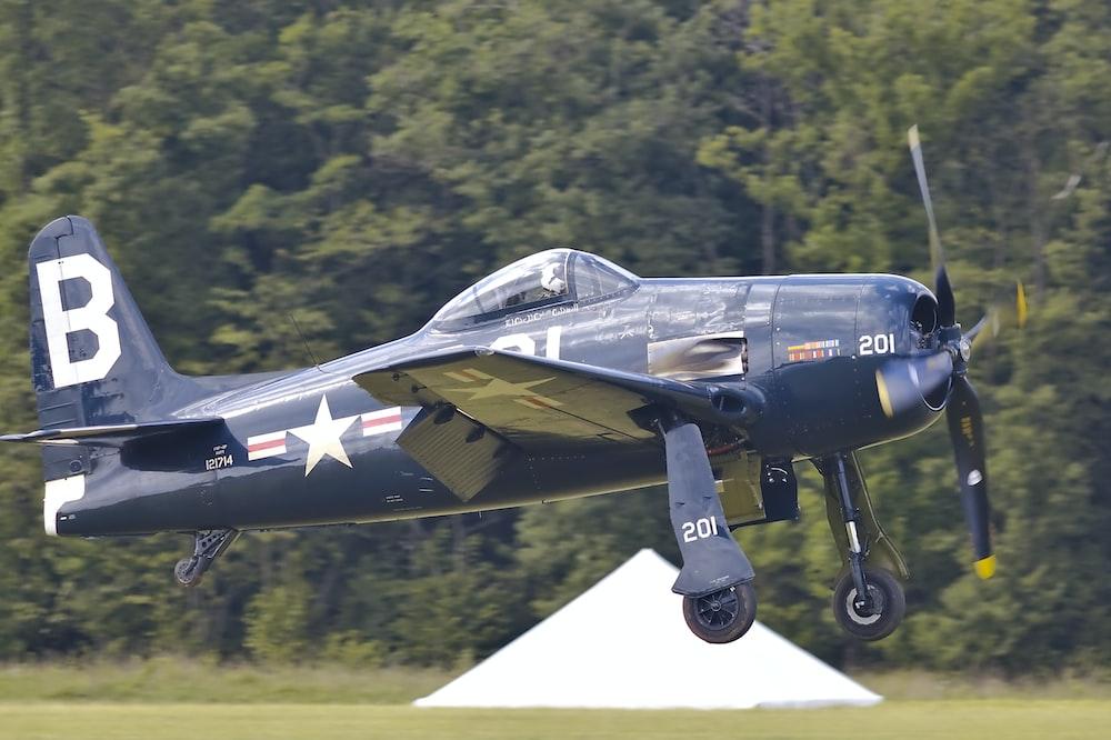 blue monoplane