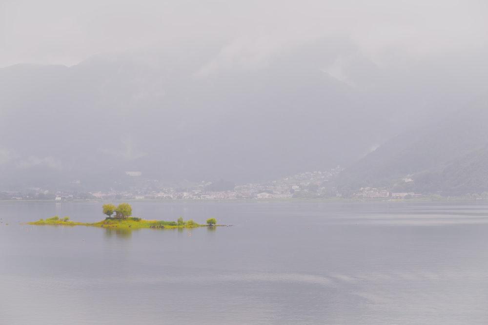 green island during daytime