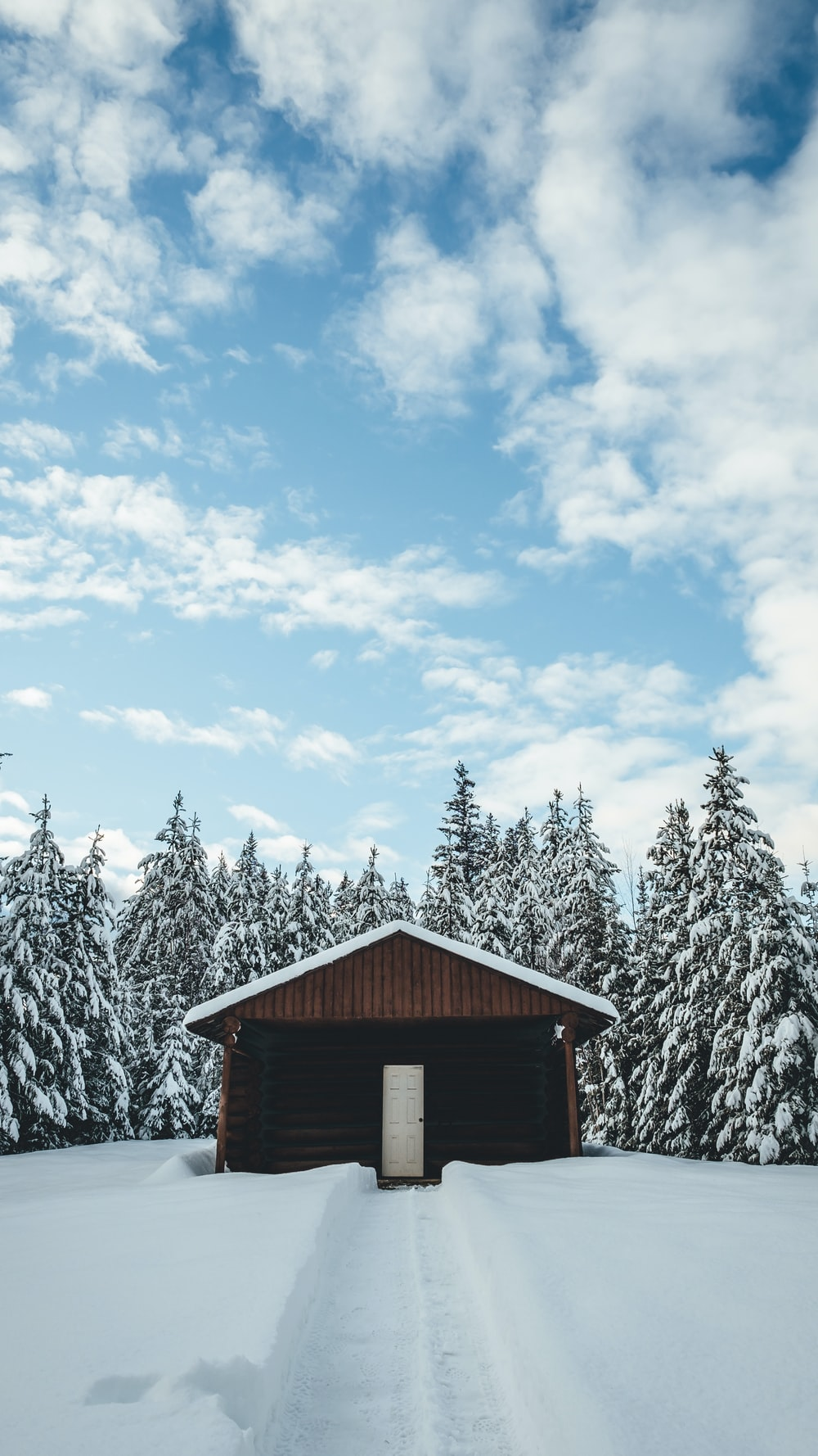 brown 1-storey house surrounded by trees and snow