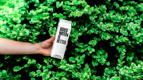 10 Eco-Friendly Brands That Are Saving Our Planet