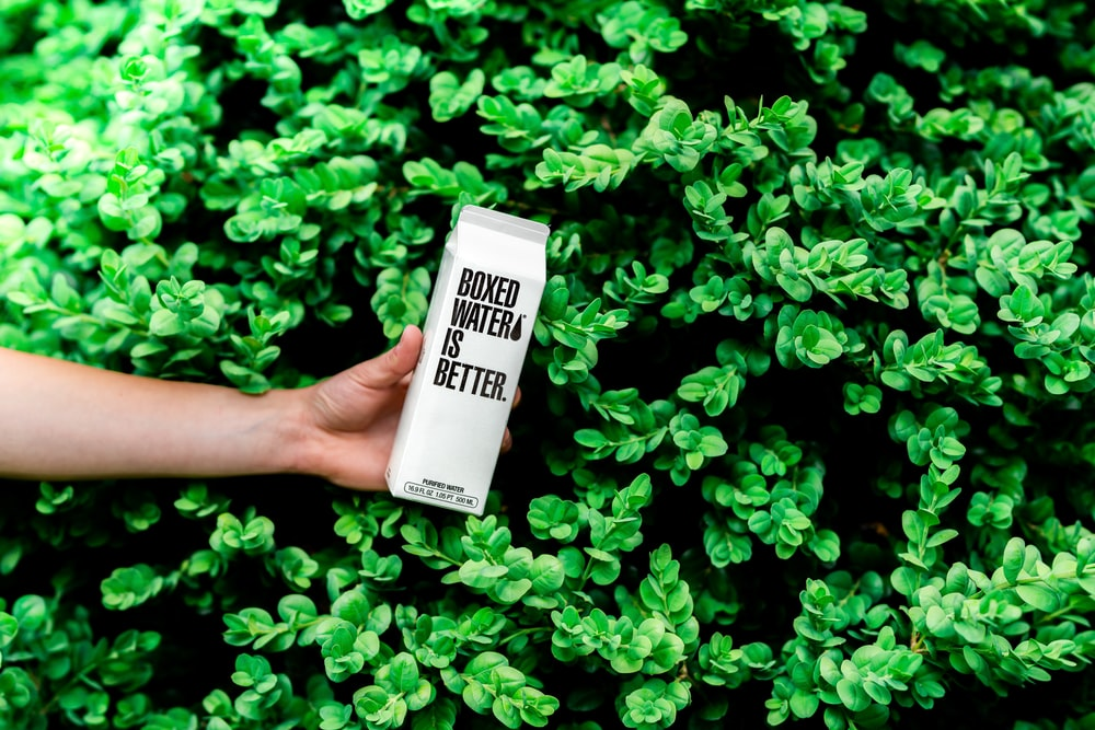 person holding boxed water is better box near shrubs