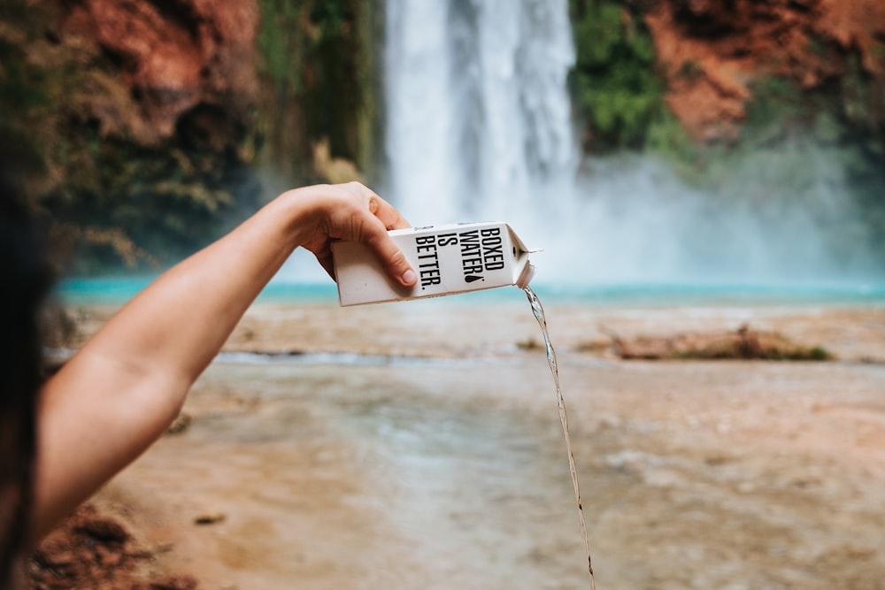 shallow focus photo of person holding white carton