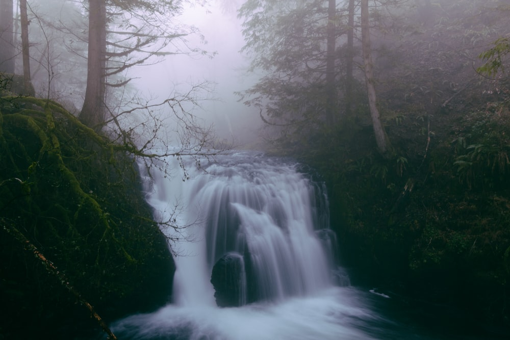 waterfalls in forests