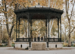 black and white gazebo surrounded with tall and orange trees