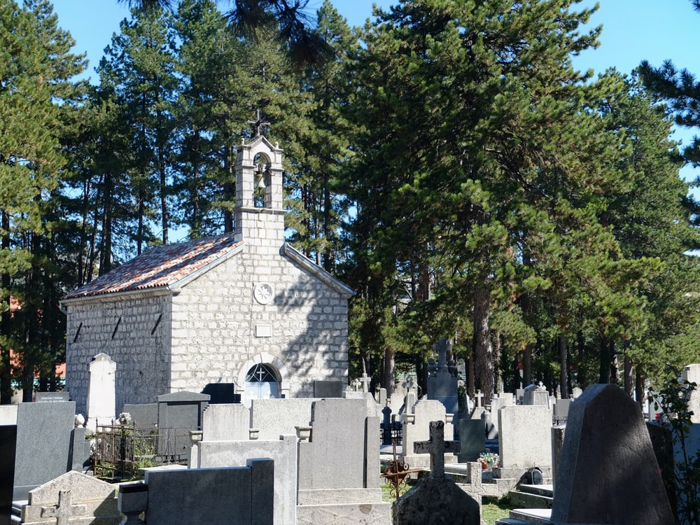gray concrete cemetery surrounded by green trees