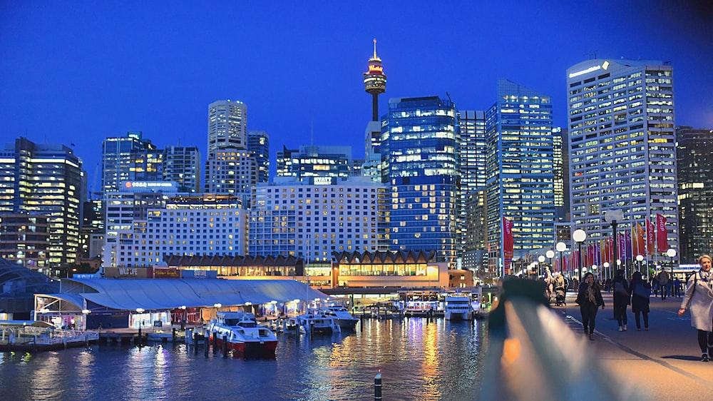 buildings beside sea during nighttime