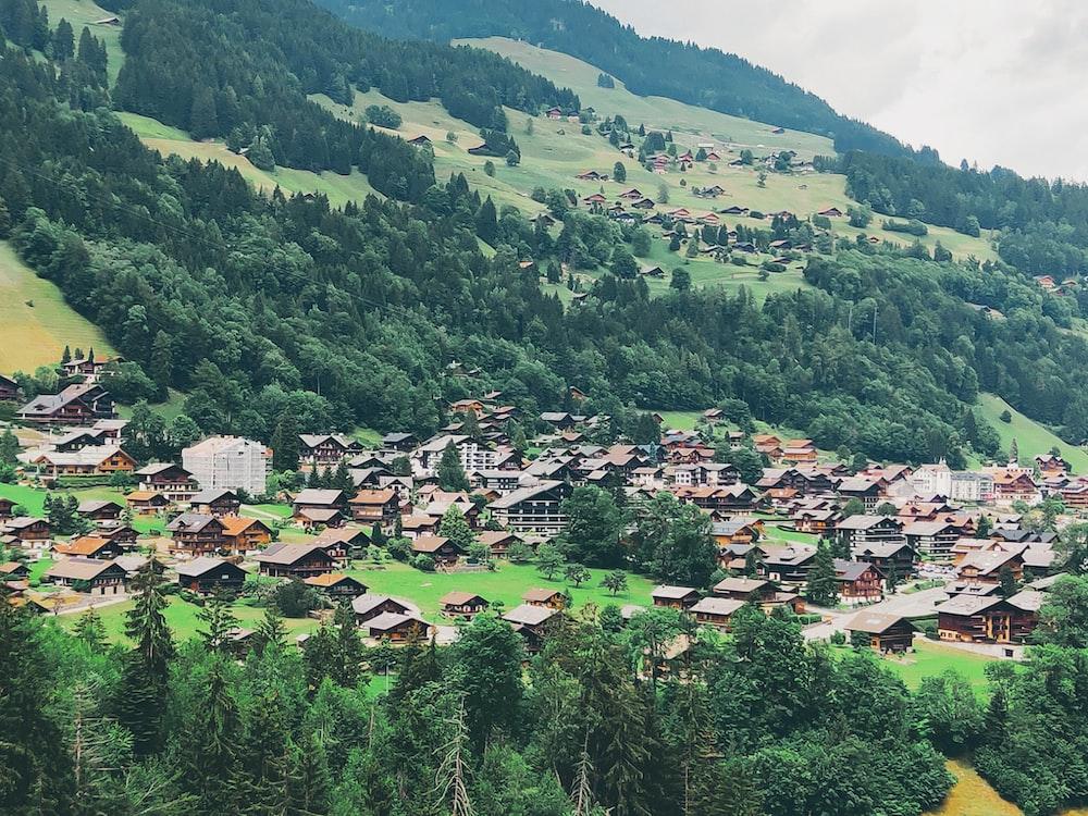 brown houses