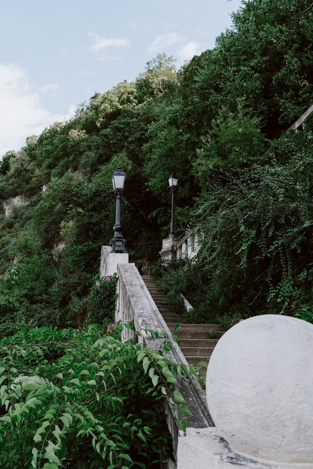 green trees near stairs during daytime