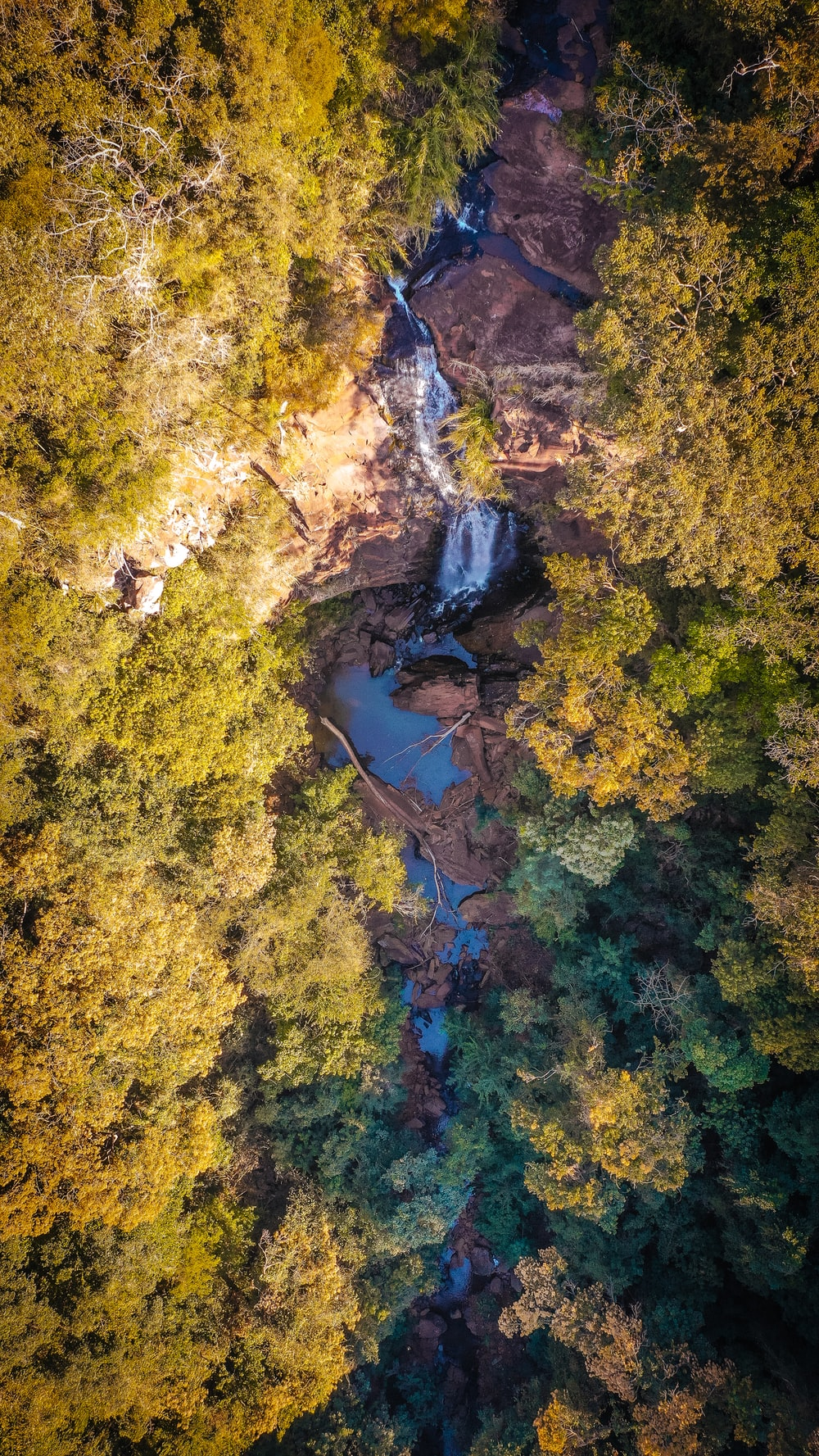 aerial photography of flowing river between green trees