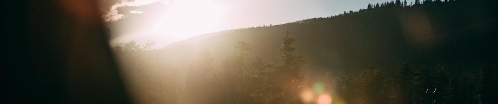 Bluzelle header image
