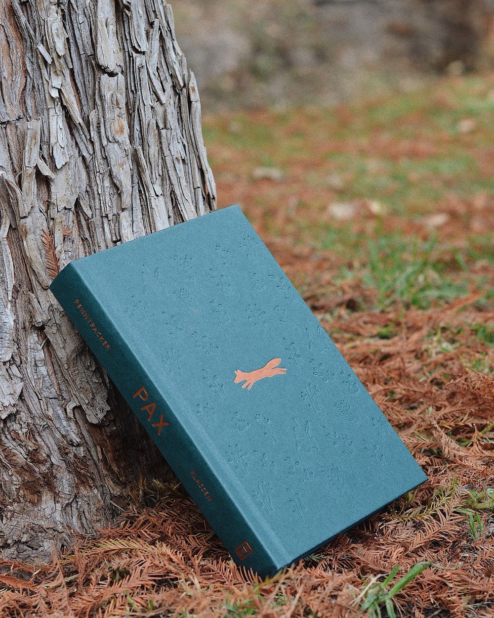 blue hardbound book on tree