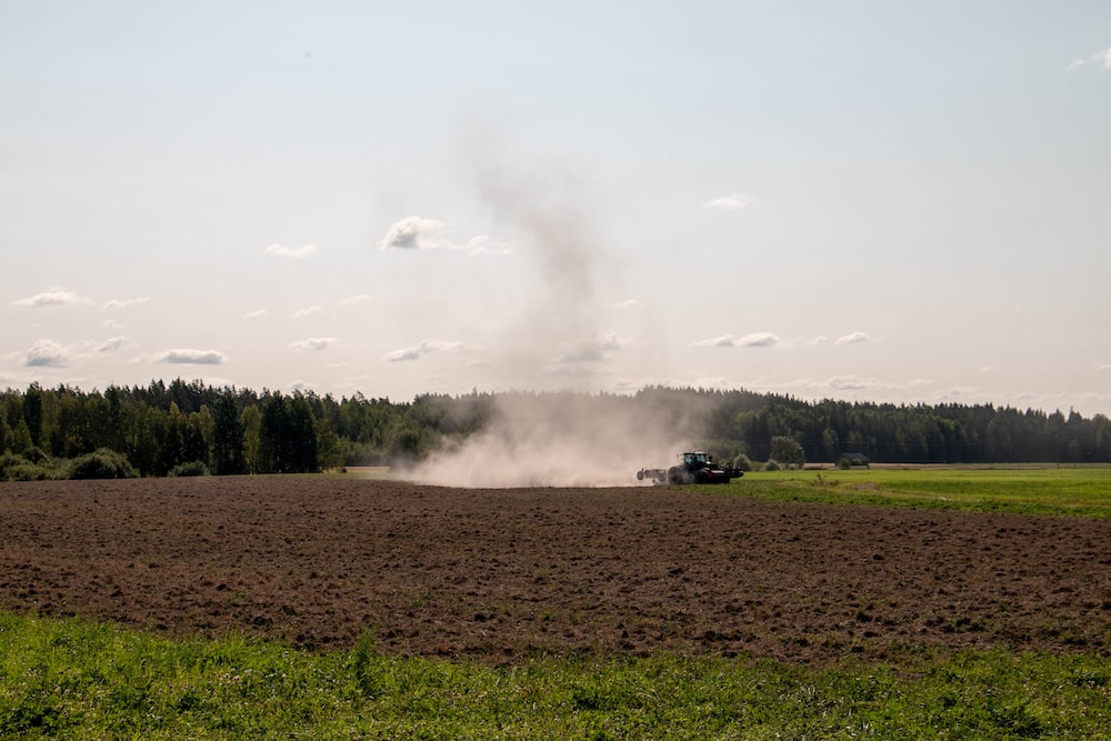 brown smokes on brown field during daytime