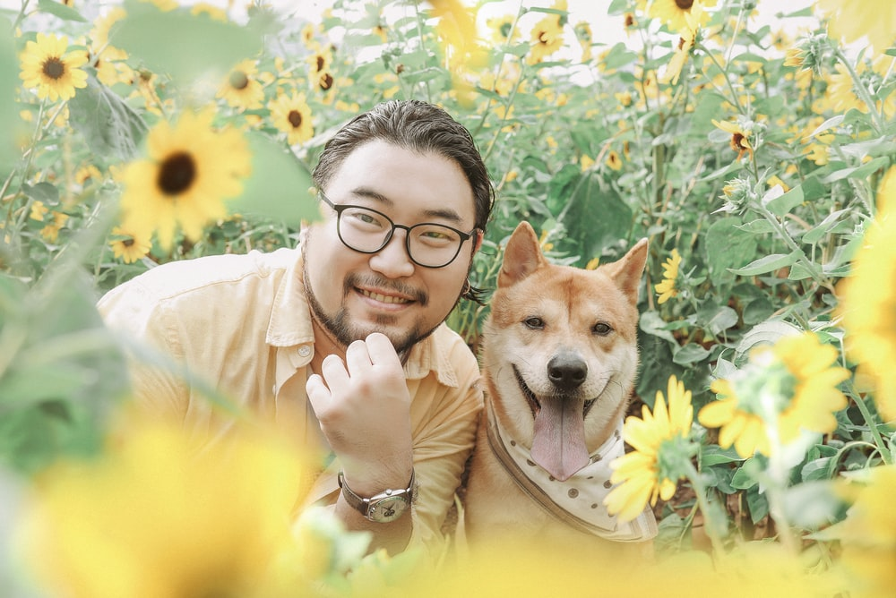 photography of smiling beside brown dog near sunflower field during daytime