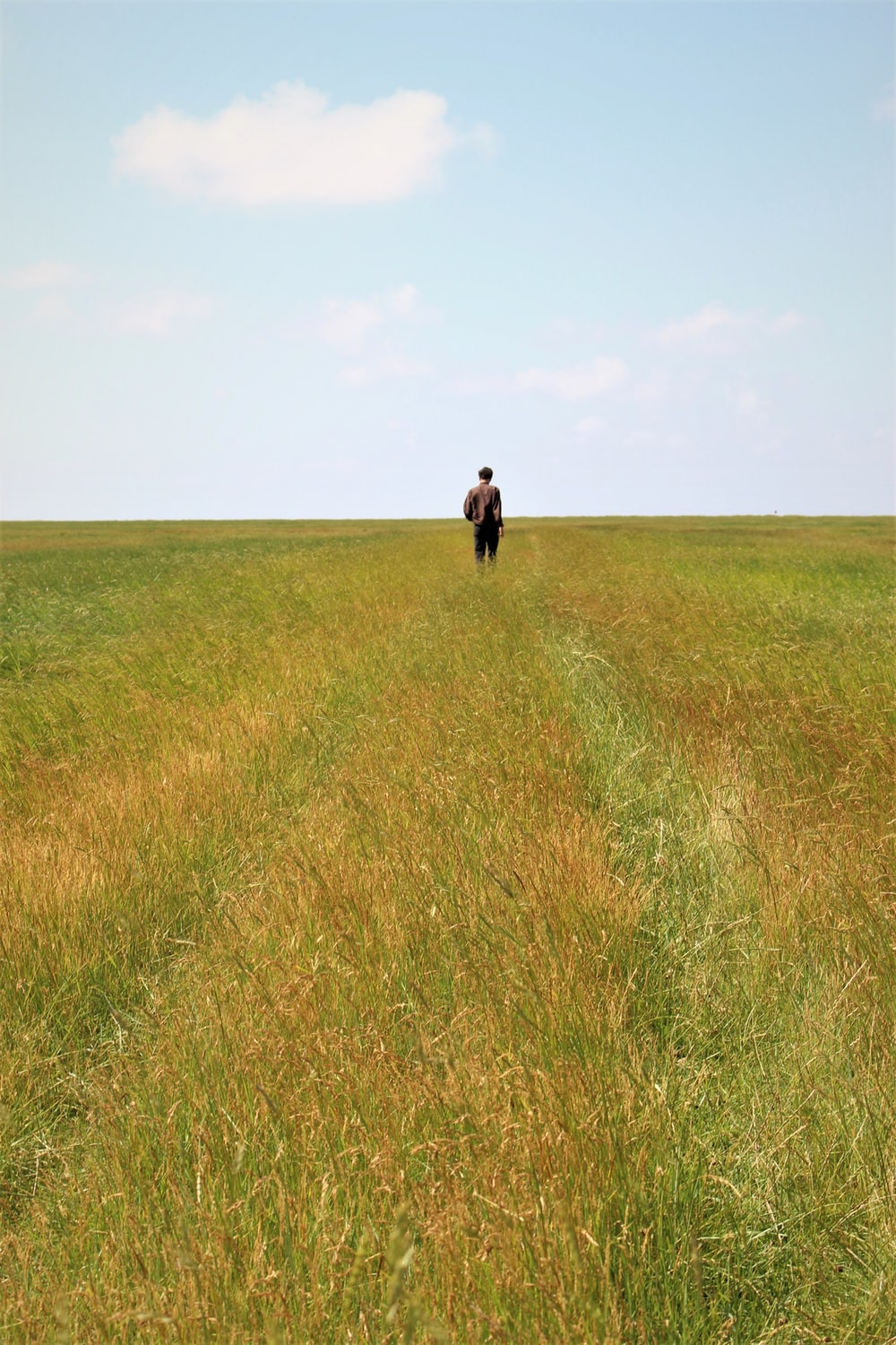 person standing on grass field during daytime